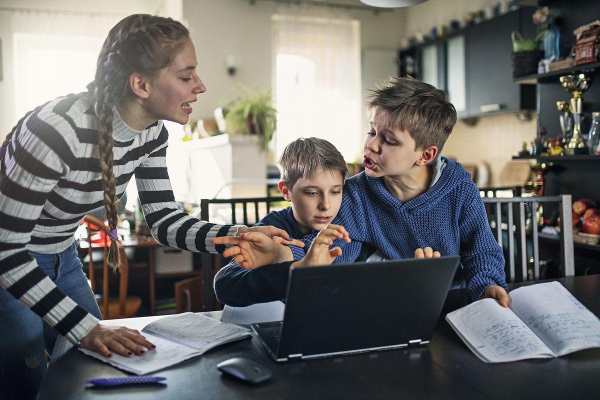Результаты исследования: родители хуже относятся к дистанционному обучению, чем дети